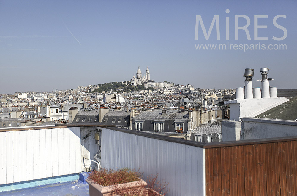 Roofs of Paris and view on Montmartre. c0449