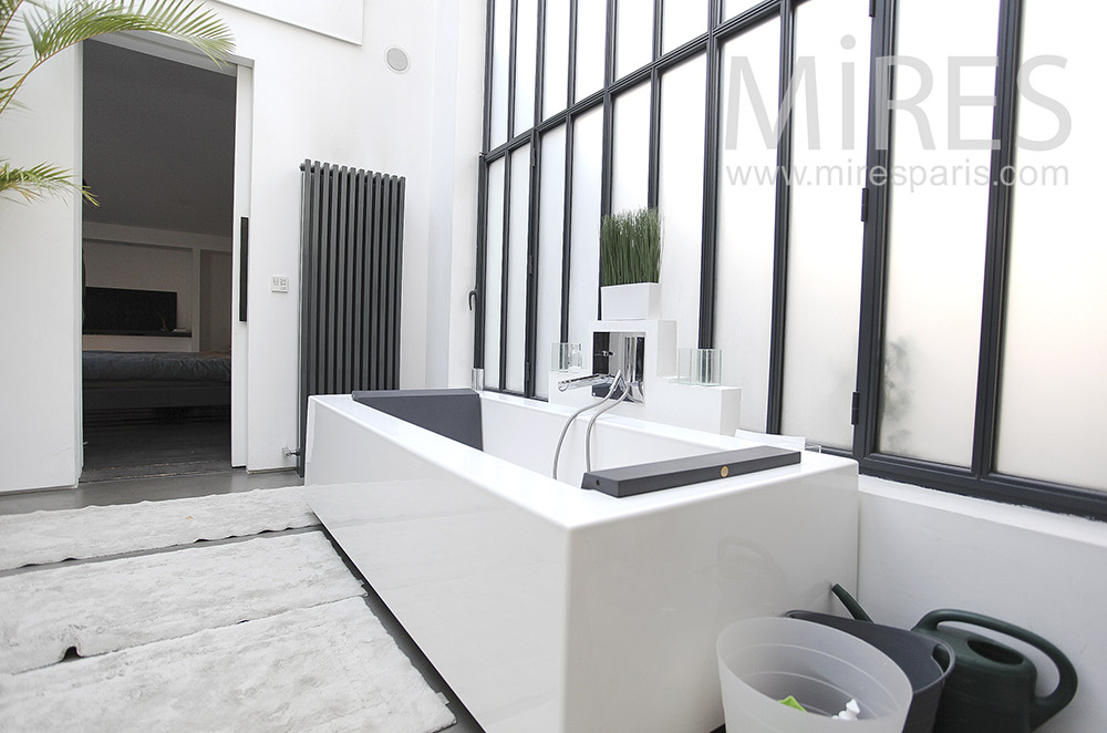 Modern baths in black and white. C0096