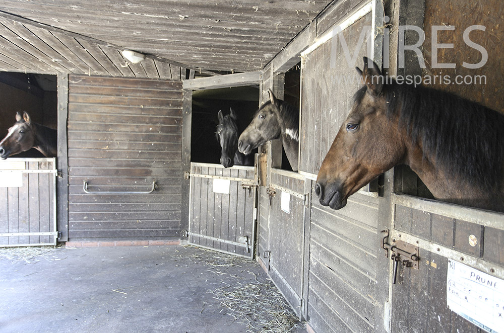 Wooden stables. C0630