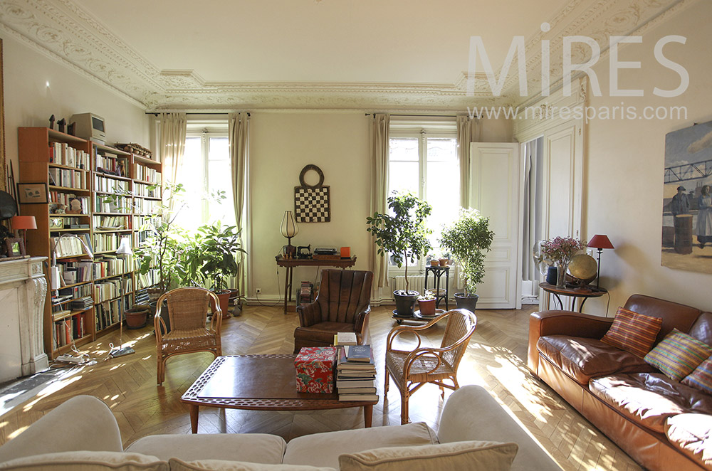 Large living room with green plants. C1622