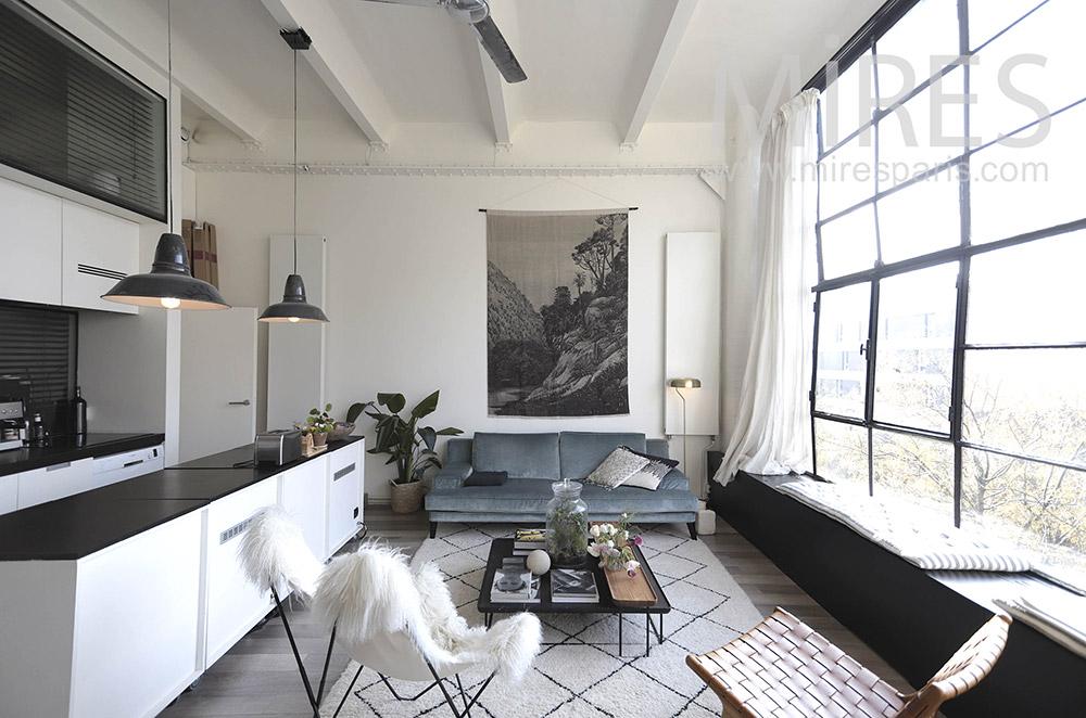 Salon déco à mur vitré. C1646