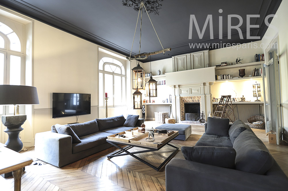 Large living room with black ceiling. C1694