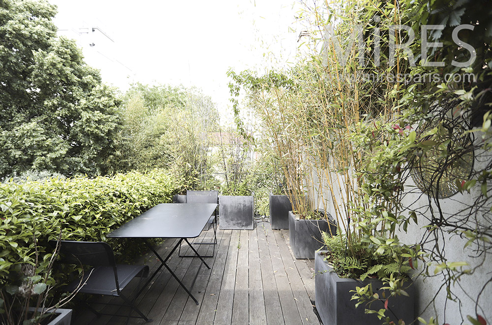 Terrace in the trees. C0067
