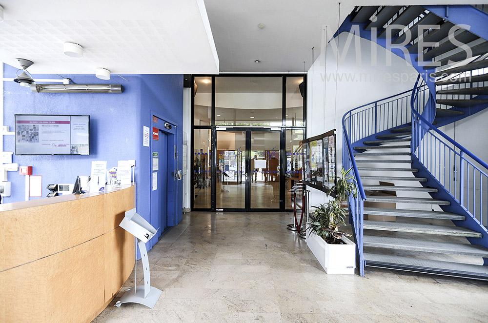 Escalier métallique bleu et noir. C1714