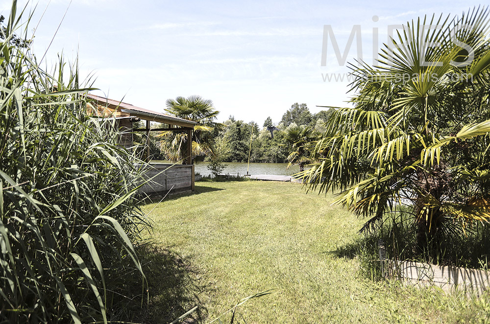 Garden, pond and palm trees. c0296
