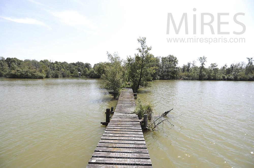 Grand ponton d'étang. C0296