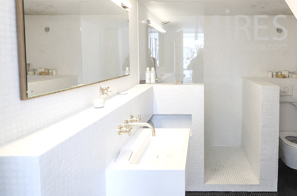 Douche et lavabo. C1725