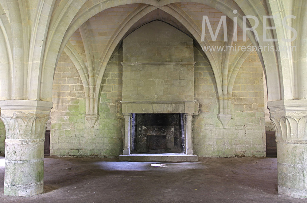 Beautiful vault and old fireplace. C0071