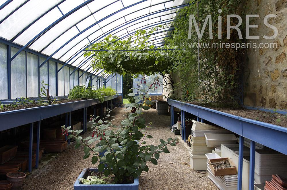 Greenhouses. C0071