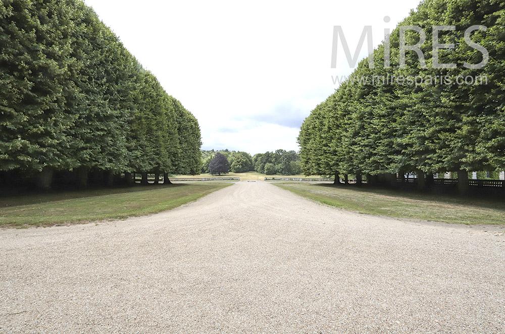 Castle park. C0053