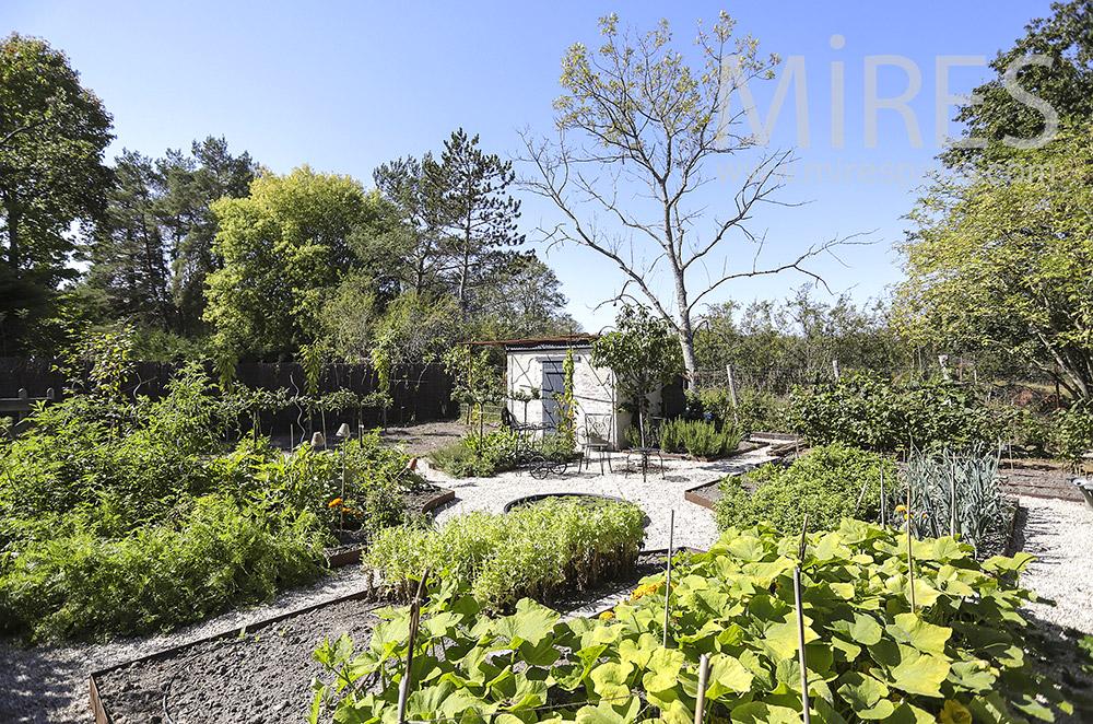 Vegetable garden, wooden enclosure. C1854