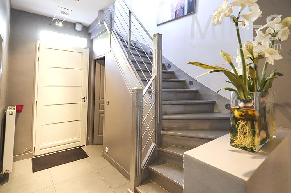 Escalier bois. C1856
