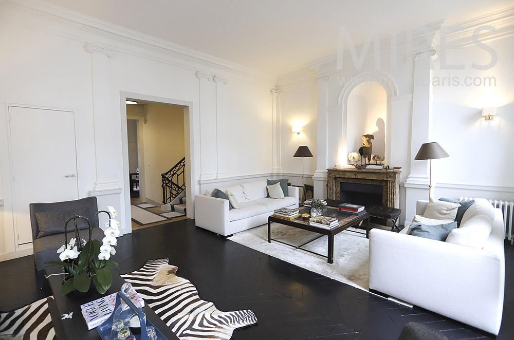 Grand salon noir et blanc. C1888