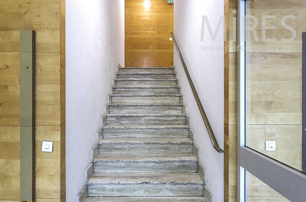 Escalier d'entrée. C1397