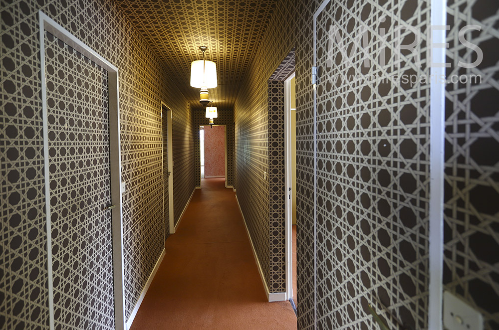 Hallway and geometric wallpaper. C1528
