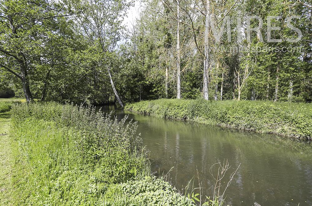 Parc avec rivière et champs. C1916