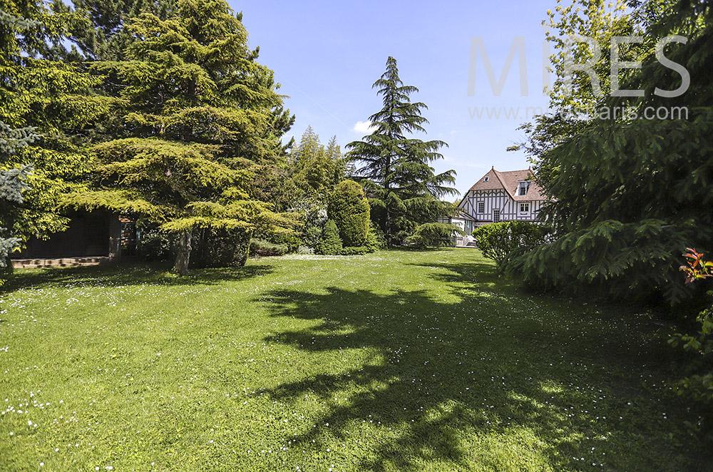 Jardin, pelouse et beaux arbres. C1917